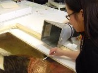 Art Conservation student working on a painting